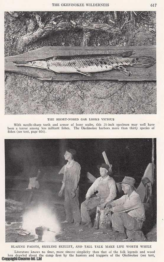 HARPER, FRANCIS - The Okefinokee Wilderness: Exploring The Mystery Land of The Suwannee River Reveals Natural Wonders and Fascinating Folklore. An original article from the National Geographic Magazine, 1934.