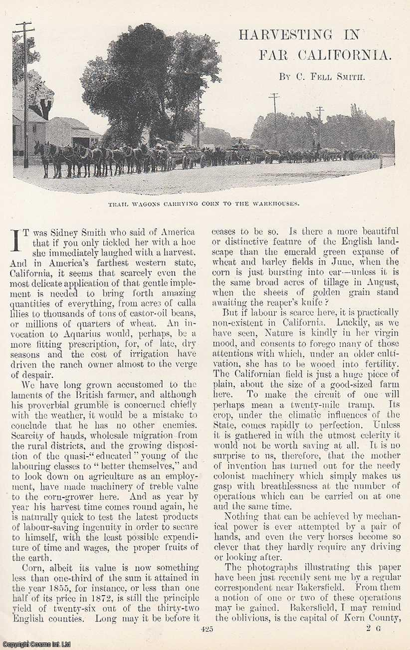 SMITH, C. FELL - Harvesting in Far California. An original article from the Windsor Magazine, 1899.
